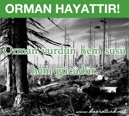 orman-haftasi-ile-ilgili-resimli-sozler-3