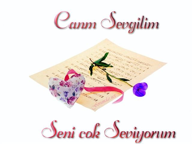 sevgililer_gunu_kartlari-8-249